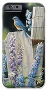 Bluebird IPhone 6s Case by Janet Moss