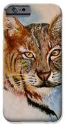 Bob Cat IPhone 6s Case by Jean Ann Curry Hess
