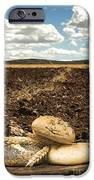 Bread And Wheat Ears. Plowed Land IPhone 6s Case by Deyan Georgiev