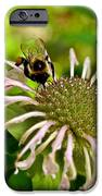 Busy As A Bee IPhone 6s Case by Valeria Donaldson