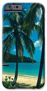 Caneel Bay Palms IPhone Case by Kathy Yates