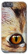 Cat Visions IPhone 6s Case by Lorraine Foster