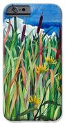 Cattails IPhone 6s Case by Helen Klebesadel