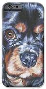 Cavalier King Charles Spaniel Black And Tan IPhone Case by Lee Ann Shepard