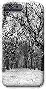 Central Park 1 IPhone 6s Case by Wayne Gill