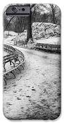 Central Park 3 IPhone 6s Case by Wayne Gill