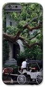 Charleston Buggy Ride IPhone Case by Skip Willits