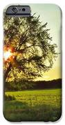 Evening Shadows IPhone 6s Case by Lori Frisch