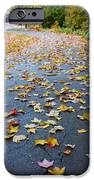 Fall Leaves IPhone 6s Case by Michael Tesar