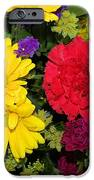 Floral Festival  IPhone 6s Case by Myrna Migala