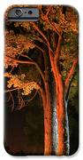 Forest Of Darkness IPhone 6s Case by Guy Ricketts