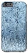 Frosted Beauty IPhone 6s Case
