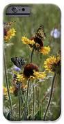 Gaillardia/blanket Flower Butterflies IPhone 6s Case