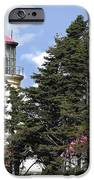 Heceta Head Lighthouse - Oregon's Iconic Pacific Coast Light IPhone Case by Christine Till