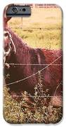 Hee Haw IPhone 6s Case by Janet Moss