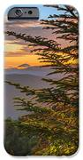 Hug A Tree. IPhone 6s Case
