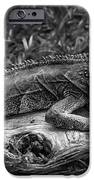 Lizard-bw IPhone 6s Case