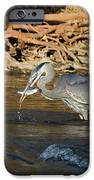 Lunch On The Neuse River IPhone 6s Case