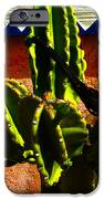 Mexican Style  IPhone Case by Susanne Van Hulst