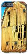Michigan Barn IPhone 6s Case