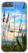 November Day At The Beach In Florida IPhone Case by Susanne Van Hulst