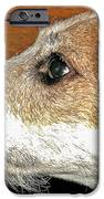 Ol Fritzy IPhone 6s Case