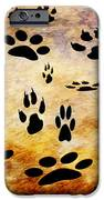 Paw Prints IPhone 6s Case by Andee Design