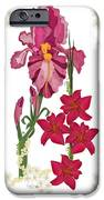 Pink Flowers With Willow Borders IPhone 6s Case by Anne Norskog