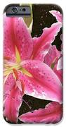 Pink IPhone 6s Case by M Montoya Alicea