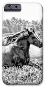Spirits Of The Horse IPhone 6s Case