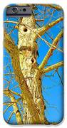 Strange Tree IPhone 6s Case by Guy Ricketts