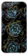 Succulent IPhone 6s Case by Rod Sterling
