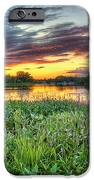 Sunset West Crooked Lake IPhone 6s Case