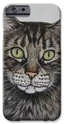 Tabby-lil' Bit IPhone 6s Case by Megan Cohen