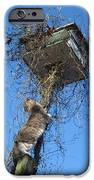 Thanksgiving Dinner IPhone 6s Case by David Sutter