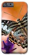 The Blue Clipper IPhone Case by Lois Bryan