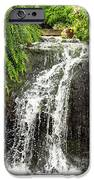 The Botanic Waterfall  IPhone 6s Case