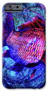 The Butterfly And The Fish IPhone 6s Case by Joseph Mosley
