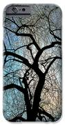 Those Gnarled Branches IPhone 6s Case