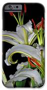 True Lilies IPhone 6s Case