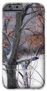 Waching Over Me  IPhone 6s Case by Kim Loftis