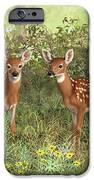 Whitetail Deer Twin Fawns IPhone 6s Case by Crista Forest