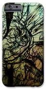 Window Drawing 01 IPhone 6s Case
