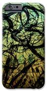 Window Drawing 05 IPhone 6s Case