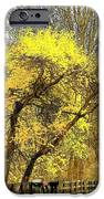 Yellow Bend IPhone 6s Case by Joyce Kimble Smith