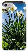 Spring Daffodils. Park Keukenhof IPhone Case by Jenny Rainbow