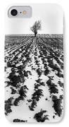 Tree In Snow IPhone Case by John Farnan