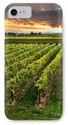 Vineyard At Sunset IPhone Case by Elena Elisseeva
