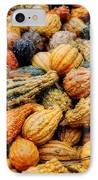 Autumn Gourds IPhone Case by Joann Vitali