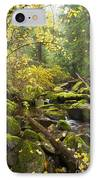 Beauty Creek IPhone Case